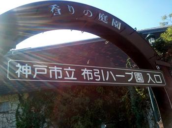 20101106_1.jpg